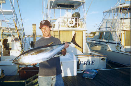yellowfin tuna from montauk
